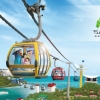 Singapore Cable Car Sky Network (เด็ก)