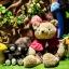 พิพิธภัณฑ์ตุ๊กตาหมี เทดดี้ พัทยา thumbnail 1