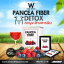Pancea Fiber แพนเซีย ไฟเบอร์ thumbnail 2