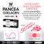 PANCEA COLLAGEN แพนเซียคอลลาเจน thumbnail 9