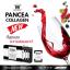 PANCEA COLLAGEN แพนเซียคอลลาเจน thumbnail 2
