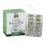 Fa Ta Lai Jone Capsules Blister Pack (400 mg. 60 Capsules) - Abhaiherb