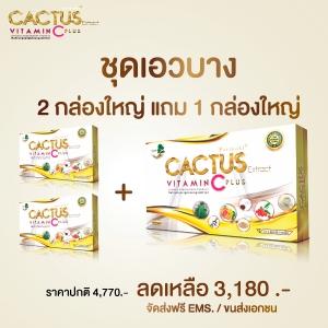 Cactus C Plus ชุดเอวบาง