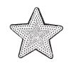 M0029 Sequins Star. 7.6x7.6cm