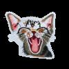 L0049 Smile Cat 7.5x7.5cm