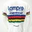 เสื้อปั่นจักรยานแขนสั้นโปรทีม : SP160440 thumbnail 3