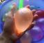 ลูกโป่งน้ำ ราคาส่ง 20/ชิ้น thumbnail 8