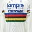 เสื้อปั่นจักรยานแขนสั้นโปรทีม : SP160440 thumbnail 1