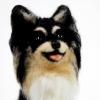 ตุ๊กตาสุนัขใยขนแกะ พันธุ์ชิวาวา (CHIHUAUHUA) Size M