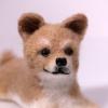 ตุ๊กตาสุนัขใยขนแกะ พันธุ์ชิบะ (SHIBA) Size S