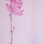 ดอกไม้วินเทจดอกไม้สีชมพู