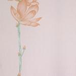 ดอกไม้วินเทจดอกไม้สีส้ม