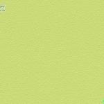 วอลเปเปอร์ลายเม็ดทรายสีพื้นเขียว