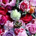 วอลเปเปอร์วินเทจ อาร์ต ลายดอกไม้ชมพู