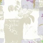วอลเปเปอร์ลายดอกไม้ หน้ากว้าง