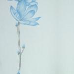 ดอกไม้วินเทจดอกไม้สีฟ้า