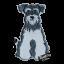 Custom Dog Lover 10th