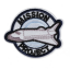 M0061 Space mission project 7.5x6.3cm