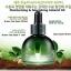 Innisfree Green Tea Seed Oil thumbnail 2