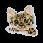 L0048 Little Cat 7.5x7.5cm