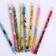 ดินสอ HB ลายการ์ตูน 30บาท/แพค 12ชิ้น/แพค