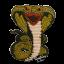 Custom King Cobra
