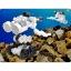 ASOBLOCK 402S ตัวต่ออโซบล็อค ชุด 402S ชุดปลาฉลามยักษ์ thumbnail 4